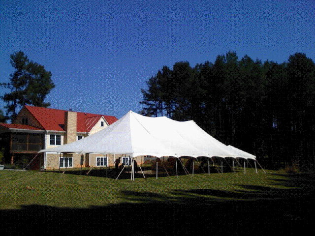 Where to find 40 x 80   POLE TENT, WHITE-EU in Cary