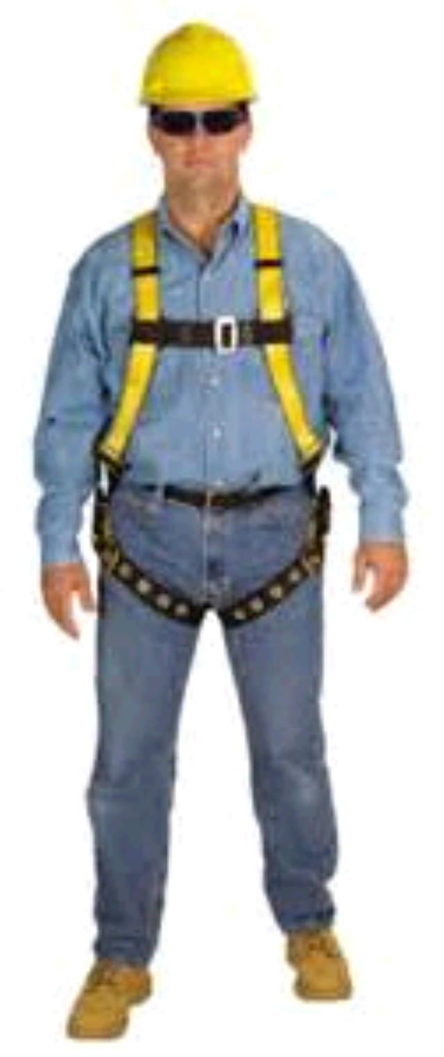Where to find SAFETY HARNESS in Cary