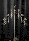 Where to rent CANDELABRA, 7-L ADJ BRASS PR in Cary NC