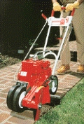 Where to rent EDGER, GAS 10  DELUXE W BLADE in Cary NC