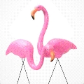 Where to rent FLAMINGOES, PINK in Cary NC
